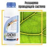 Лигномикс (LIGNOMIX )