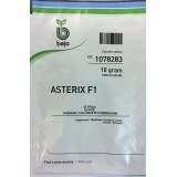 Астерикс (Asterix F1)