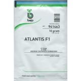Атлантис (Atlantis)