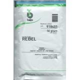 Ребел (Rebel)
